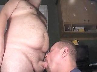 bear sucking a bear